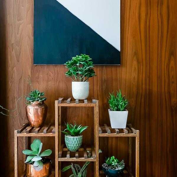 19_Hallway Plants